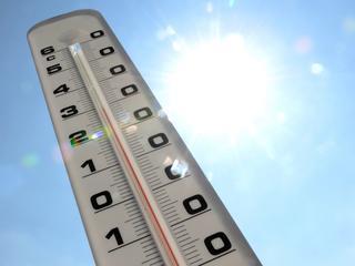 Vooral ouderen konden hoge temperaturen niet aan