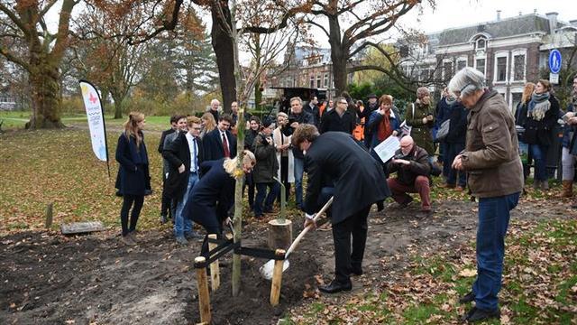 Bijzondere bomen Singelpark aangeplant
