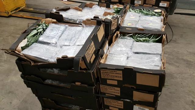 Vijfhonderd kilo cocaïne gevonden tussen lading ananassen