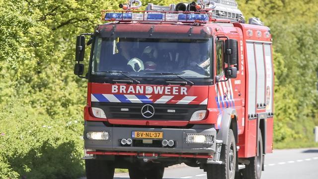 Brandweer rukt uit voor vastzittende vogel op woning in Etten-Leur.