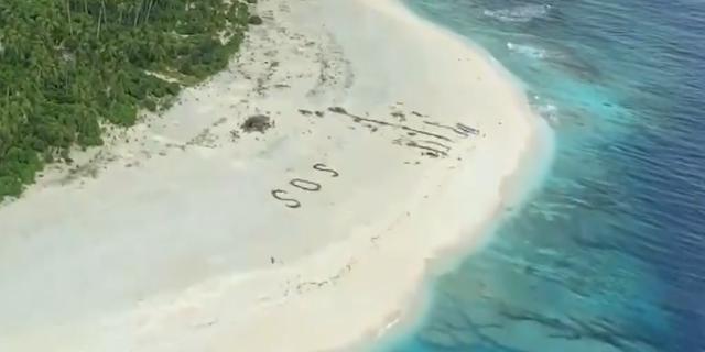 Goed nieuws: Vermiste zeelieden gered | Gorilla zoekt naam