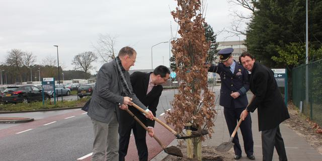Laatste boom nieuwe Aviolandalaan Hoogerheide geplant