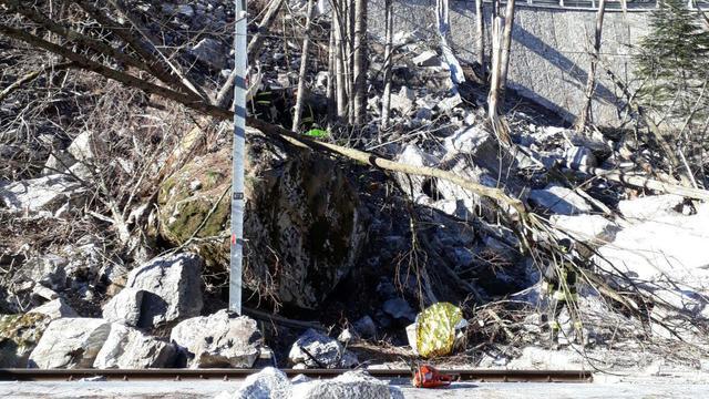 Twee doden bij rotslawine Italiaans-Zwitserse grens