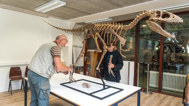 'Tyrannosaurus' gereconstrueerd aan de hand van in Nederland gevonden bot