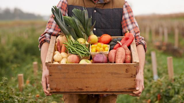 'Biologisch eten barst van de pesticiden'