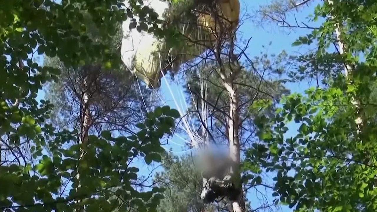 Duitse brandweer haalt straaljagerpiloot uit boom na crash