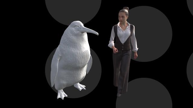 Fossielen van grote pinguïnsoort uit Nieuw-Zeeland ontdekt