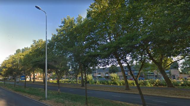 Automobilist rijdt lantaarnpaal omver op Burgemeester Bruins Slotsingel