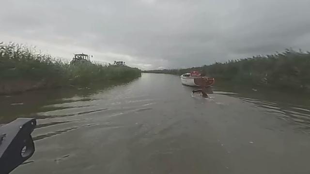 Livestream: Volg de Elfstedenzwemtocht van Maarten van der Weijden