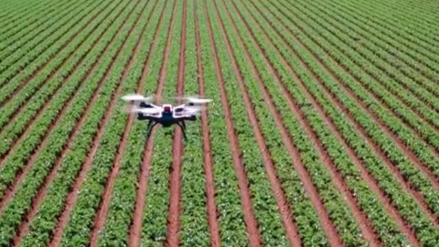 Staatssecretaris belooft 8 miljoen voor innovatie in landbouw