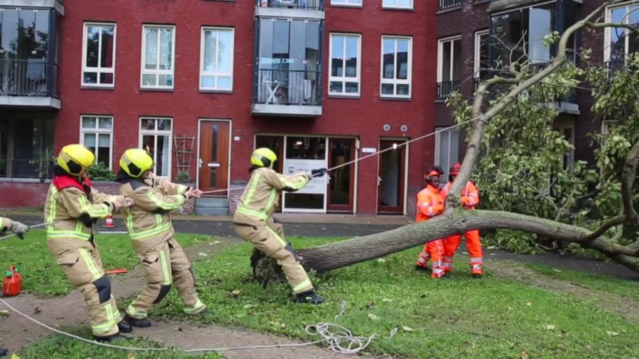 Brandweer druk door hele land met omgewaaide bomen door storm