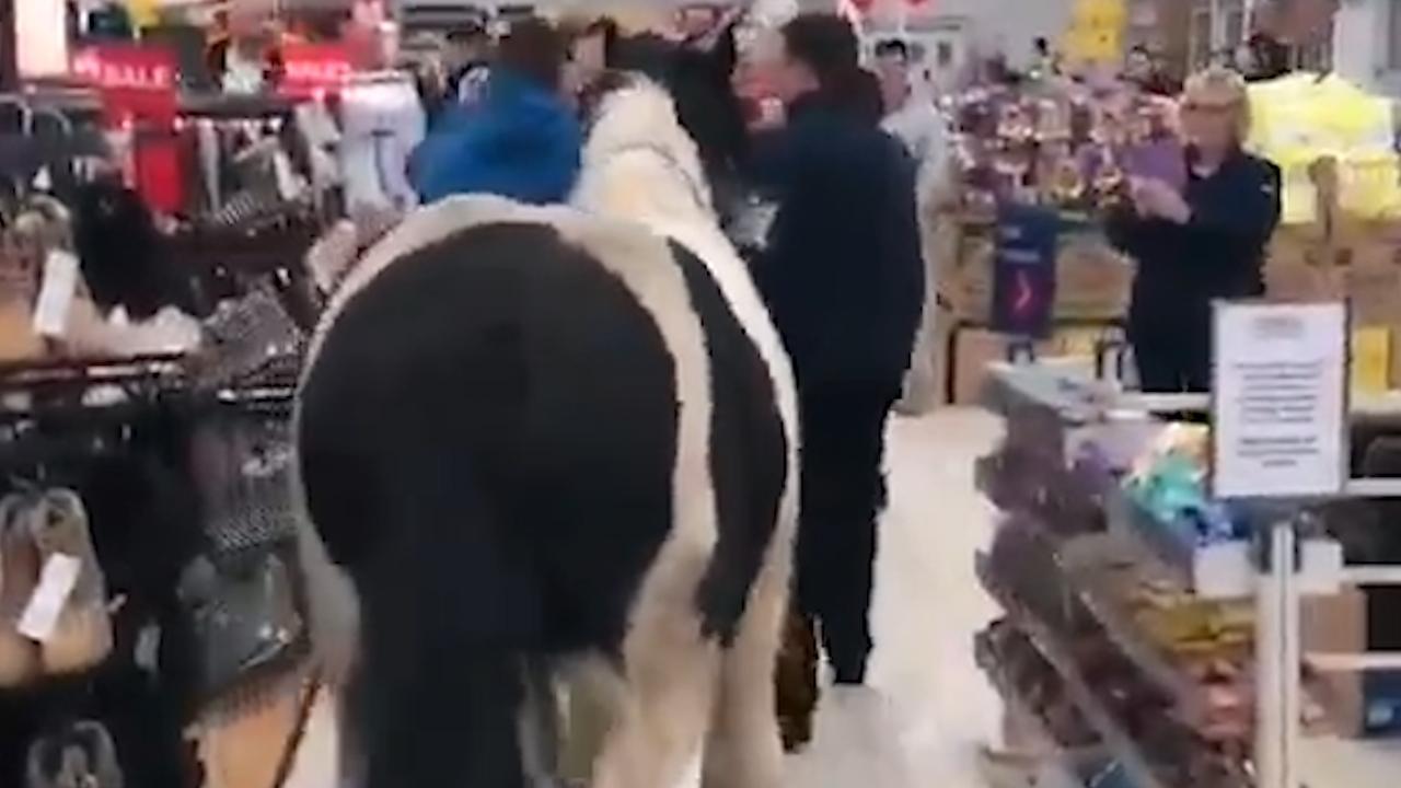 Man loopt met paard in supermarkt Dublin