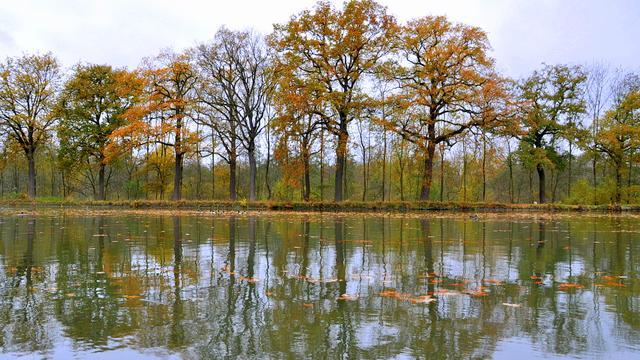Wisselvallig herfstweer in Salland