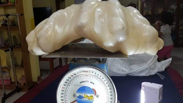 'Parel van 34 kilo gevonden op de Filipijnen'