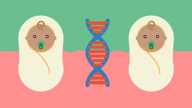 Het is meerlingendag: maar hoe krijg je nou een tweeling?