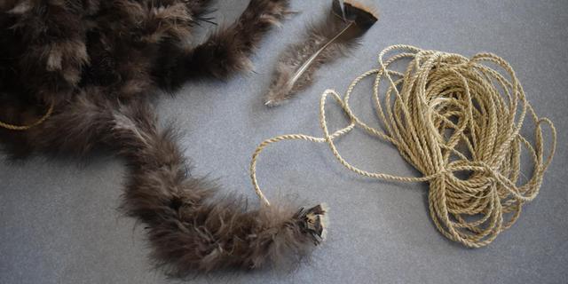Inheemse Amerikanen fokten kalkoenen voor verenvacht