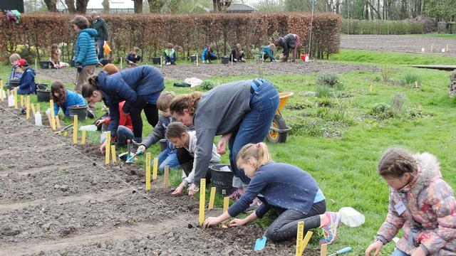 Schooltuinen dit jaar helemaal biologisch