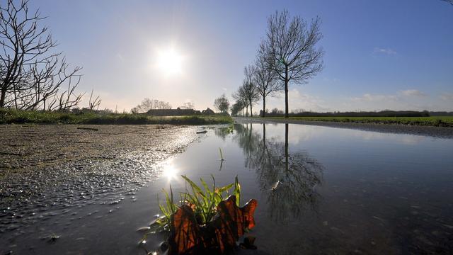 Warmterecord gebroken op 'lenteachtige' Oudjaarsdag