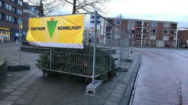 Op deze plekken kan je de kerstboom inleveren in de gemeente Utrecht