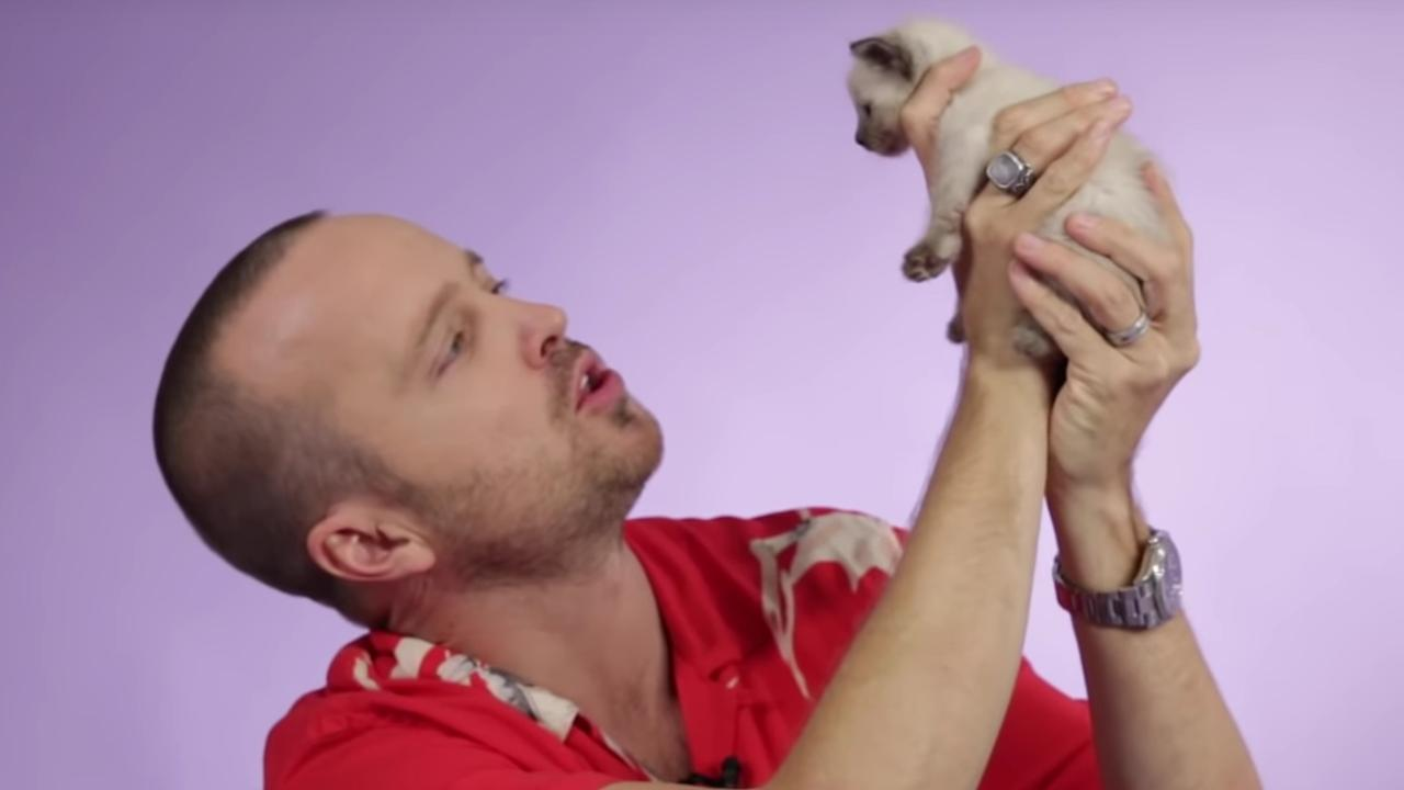 Aaron Paul knuffelt kittens bij interview over El Camino