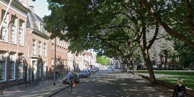 Historische stoepen komen na herinrichting terug in Nieuwe Boteringestraat