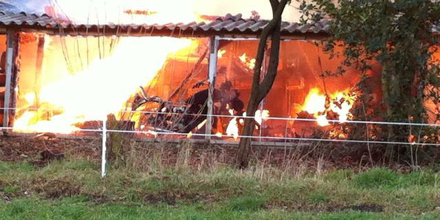 Dierenarts uit Den Ham komt met oplossing om dieren uit stalbrand te redden