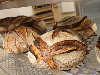 Deze fouten maken thuisbakkers vaak met brood